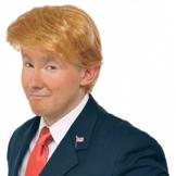 Donald Trump Perücke | Mr. President Kostüm